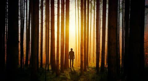 человек в лесу на казате
