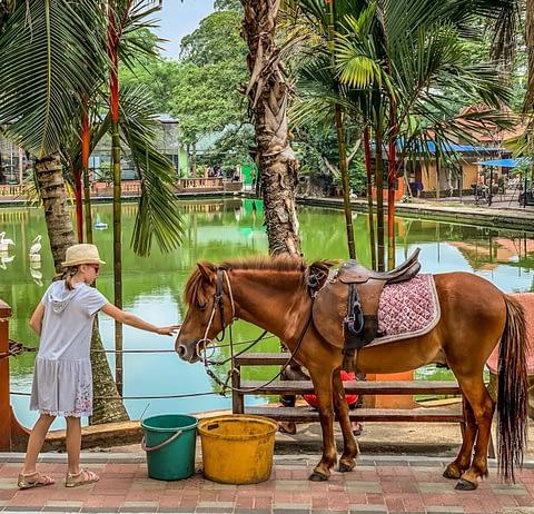 зоопарк малайзии джохор Johor zoo