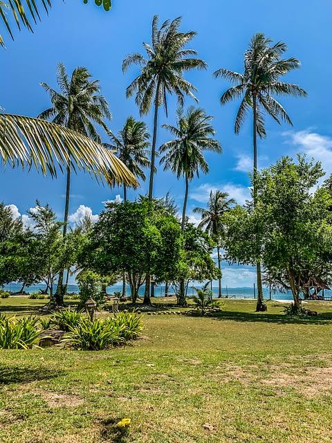 пальмы и море на острове Бесар Pulau Besar
